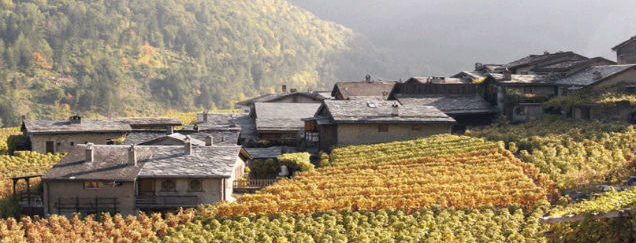 Valais Wine Tours